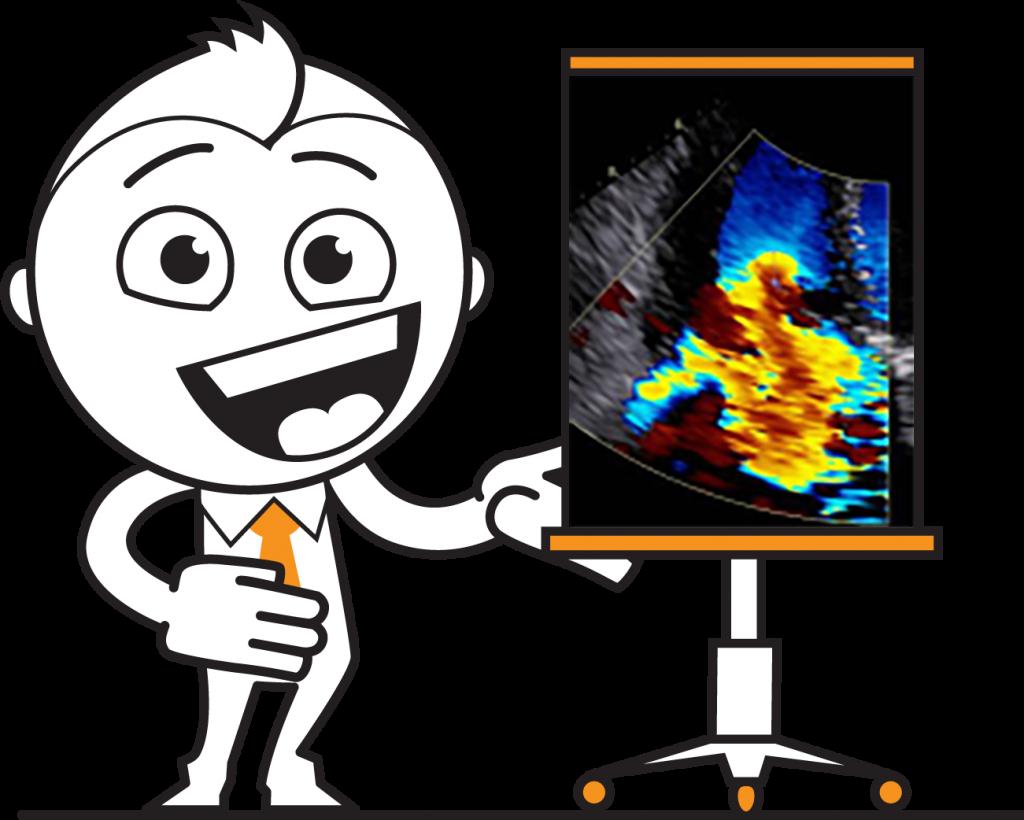 Spezialkurs Echokardiographie